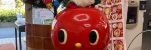 有明楽器からクリスマスプレゼント